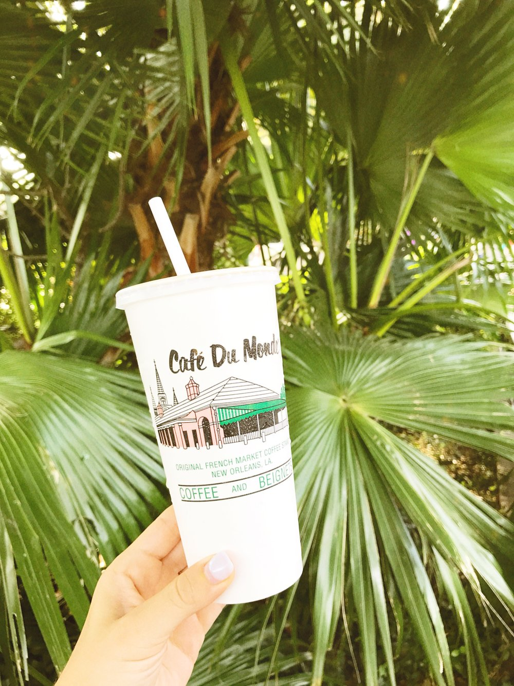 NOLA favorites. Cafe Du Monde