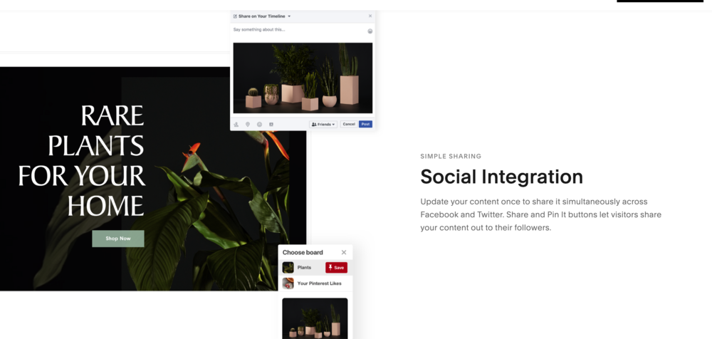 social media integration squarespace - AlexandreKan