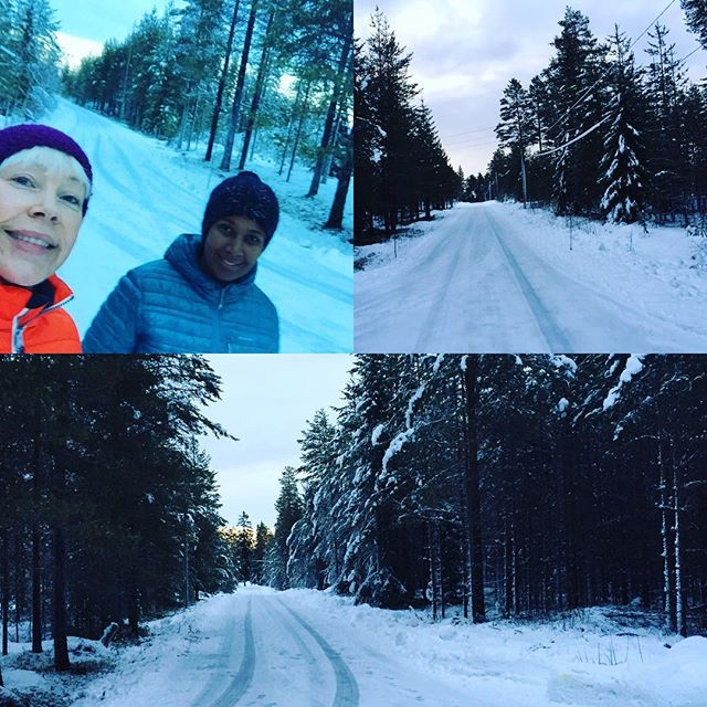Morgon i skogen. Lite Narnia-feeling #lovewinter #morning #lovesundays #lovenature #lifeinswedishlapland