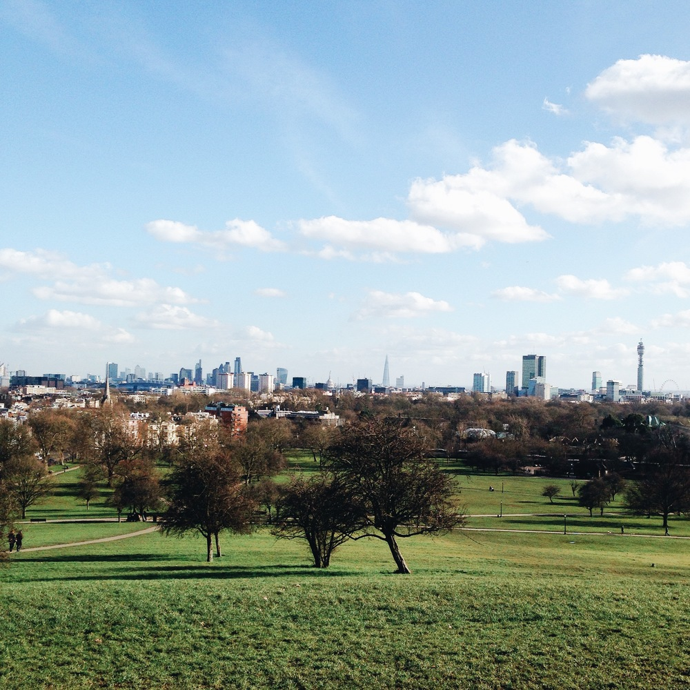 SOA_london_primrose-hill.jpg