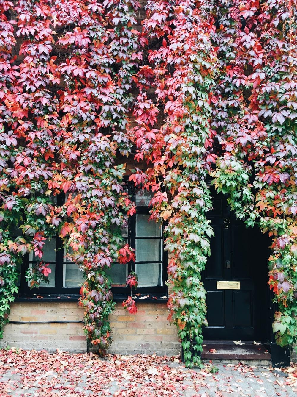 SOA_london-kensington.jpg