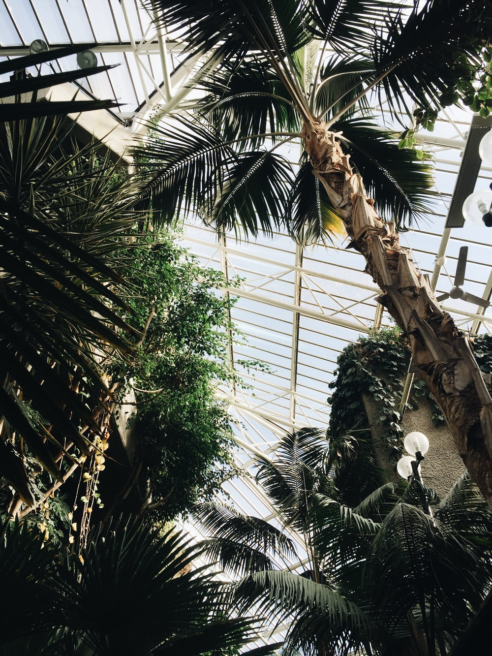 SOA_London-Barbican-Conservatory.jpg
