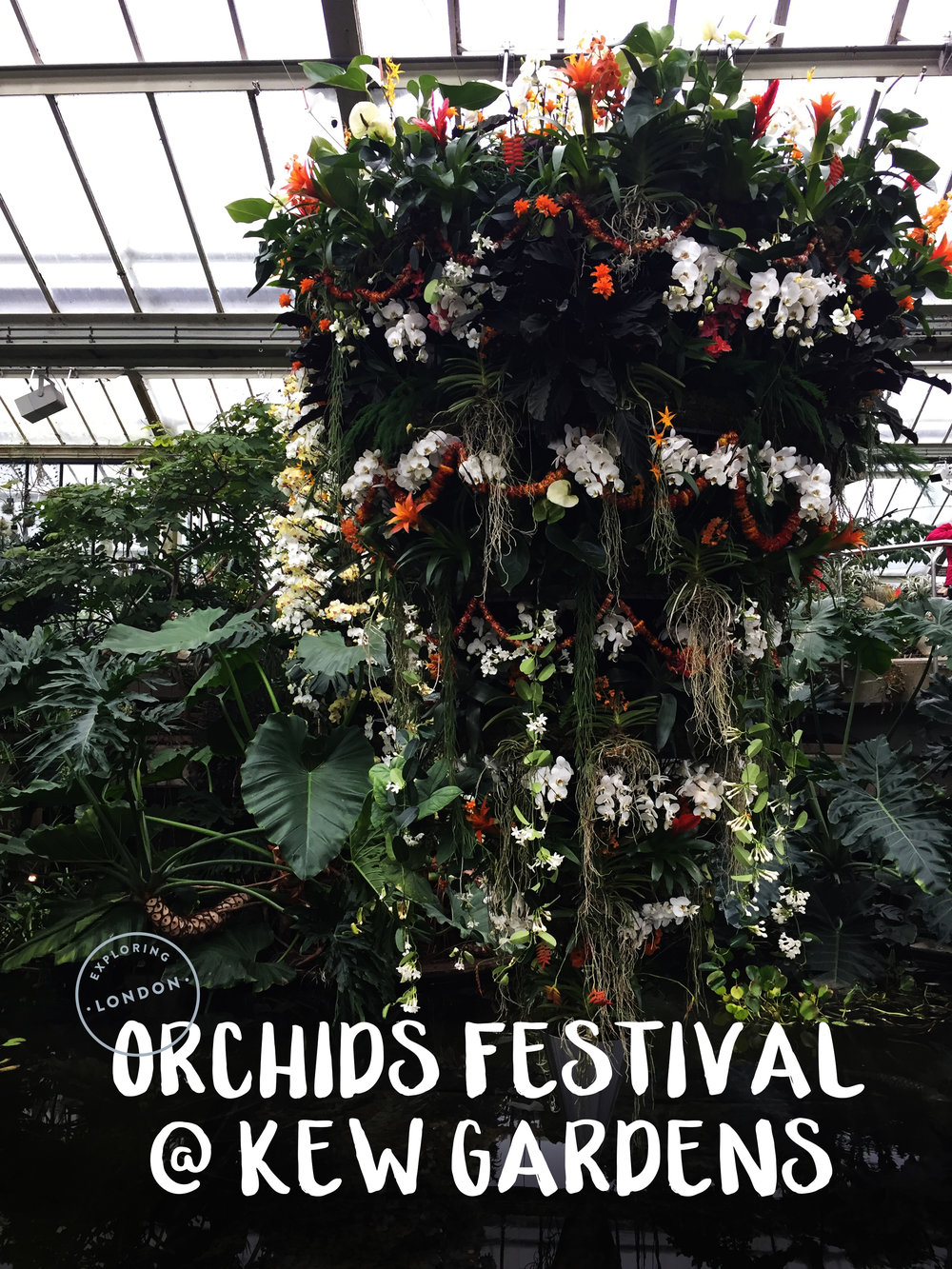 Exploring London: The Orchids Festival At Kew Gardens | Sea of Atlas