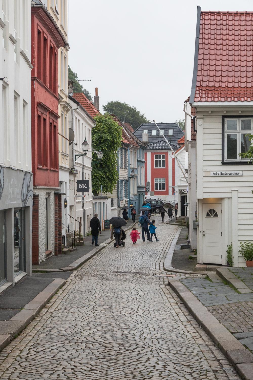 Fjellet Nord, Bergen, Norway