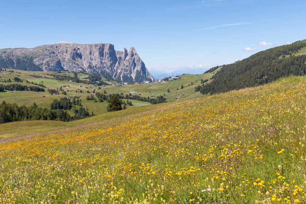 Seiser Alm, Northern Italy | The Dolomites | Ciao Fabello
