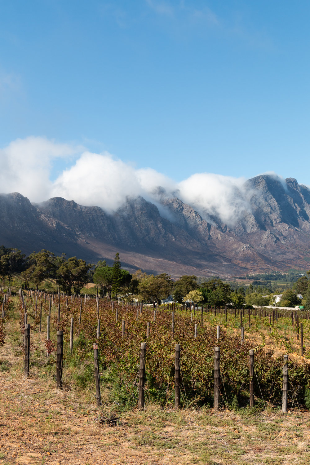 Franschhoek Pass | South Africa | Ciao Fabello