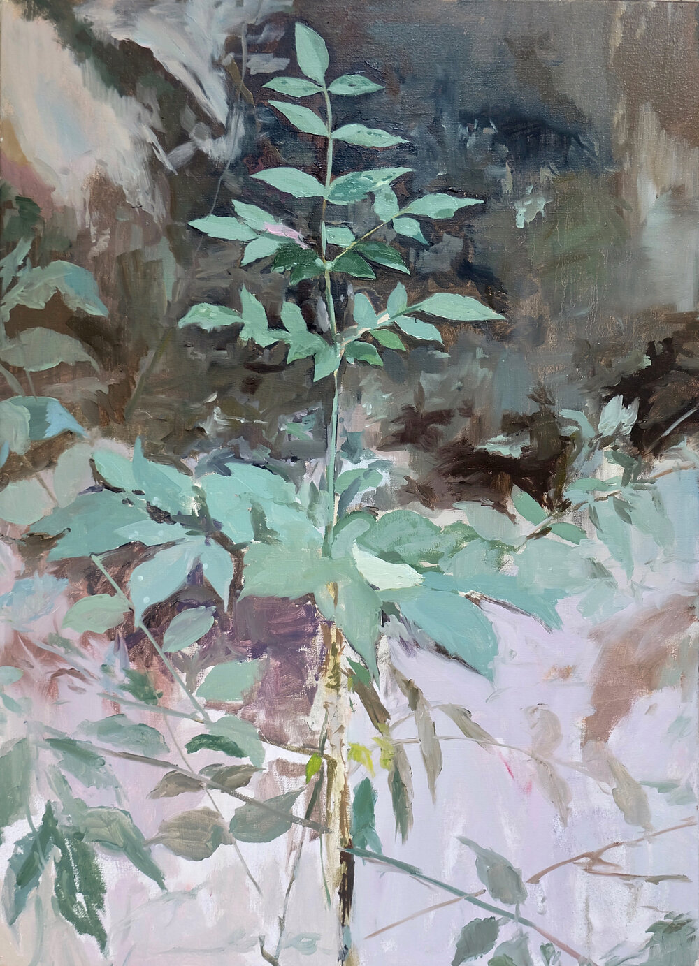 oil on canvas / 2018