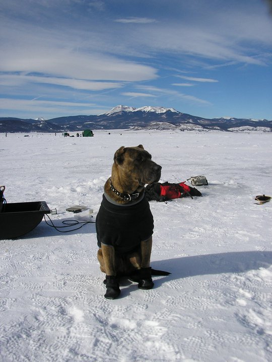 Laya ice fishing.jpg