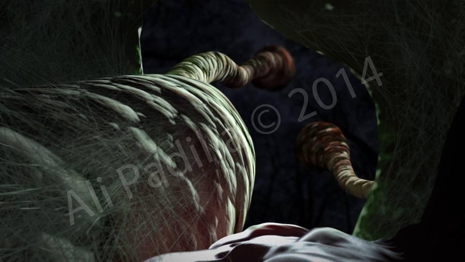 cordyceps militaris