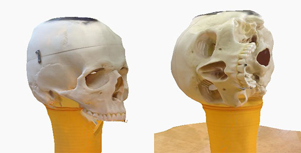 123D Catch skull tests