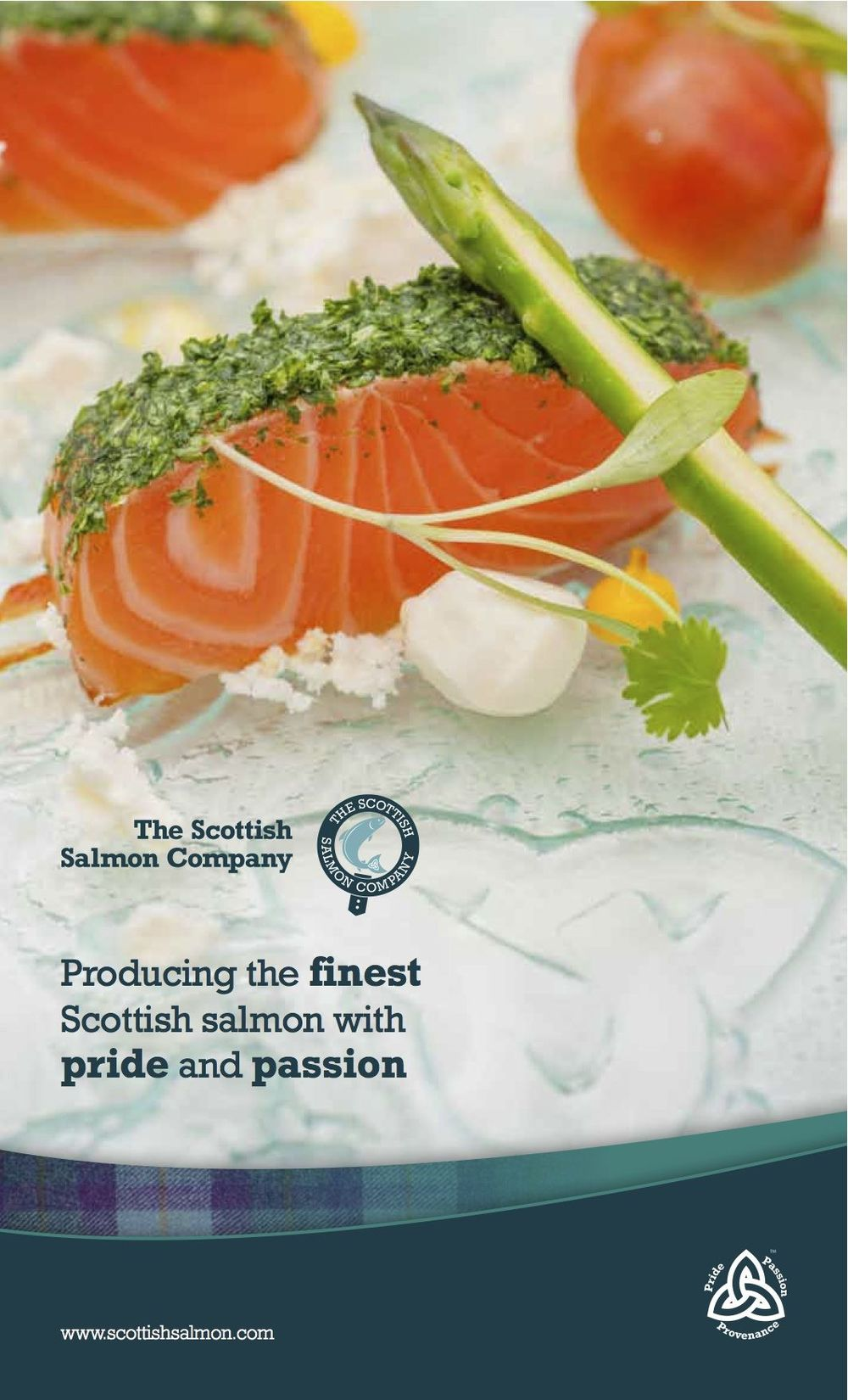 salmon brochure