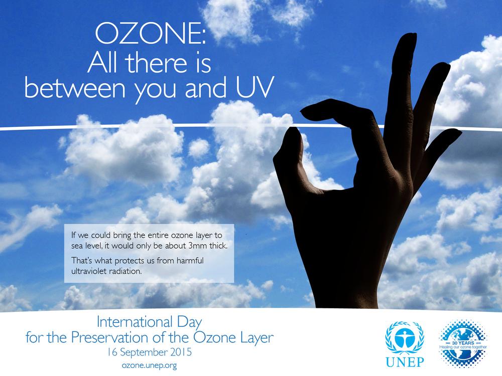 Client: UNEP Ozone Secretariat