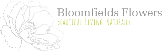 Bloomfields Flowers