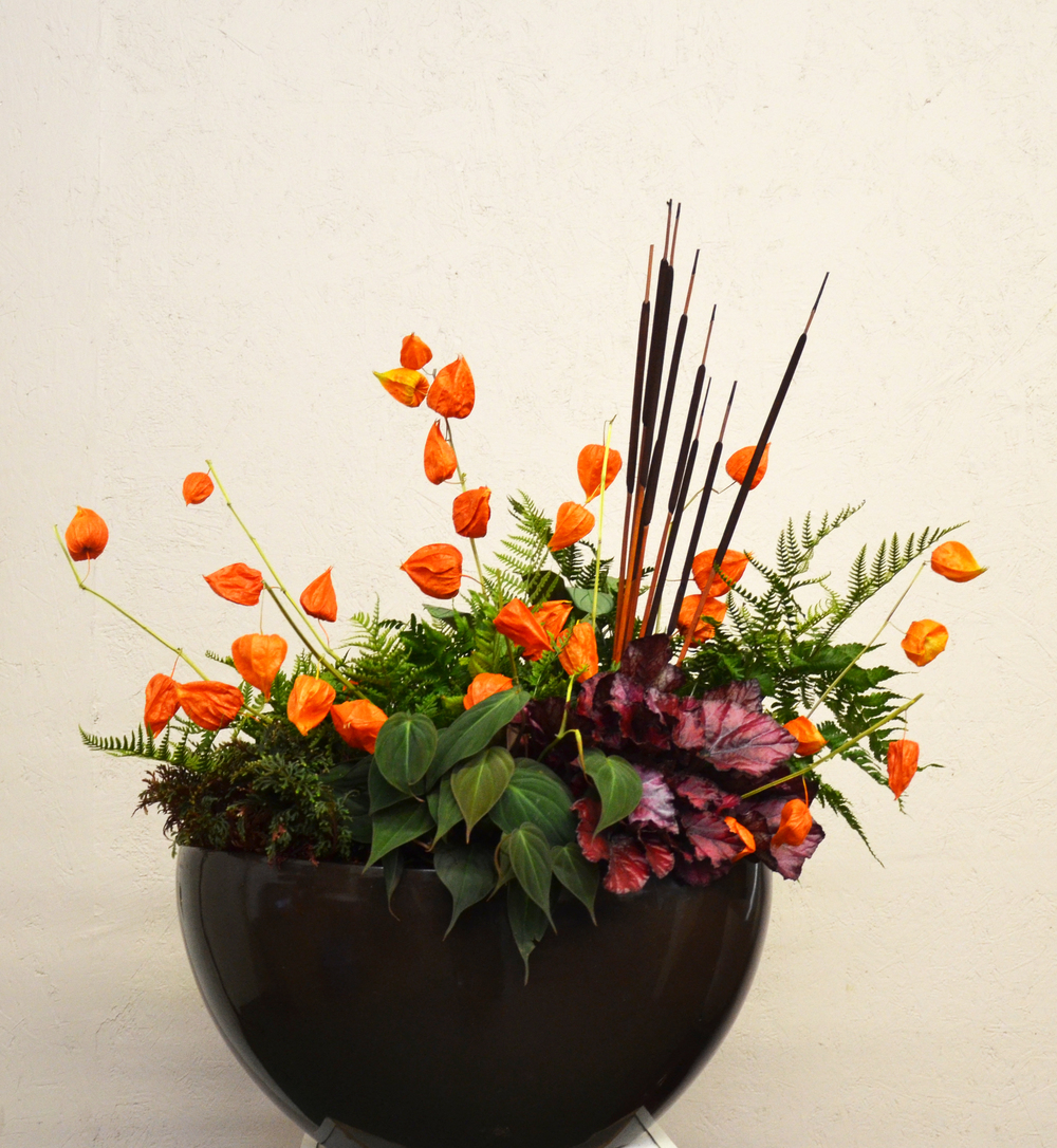 Harding Botanicals. Fall Colorbowl