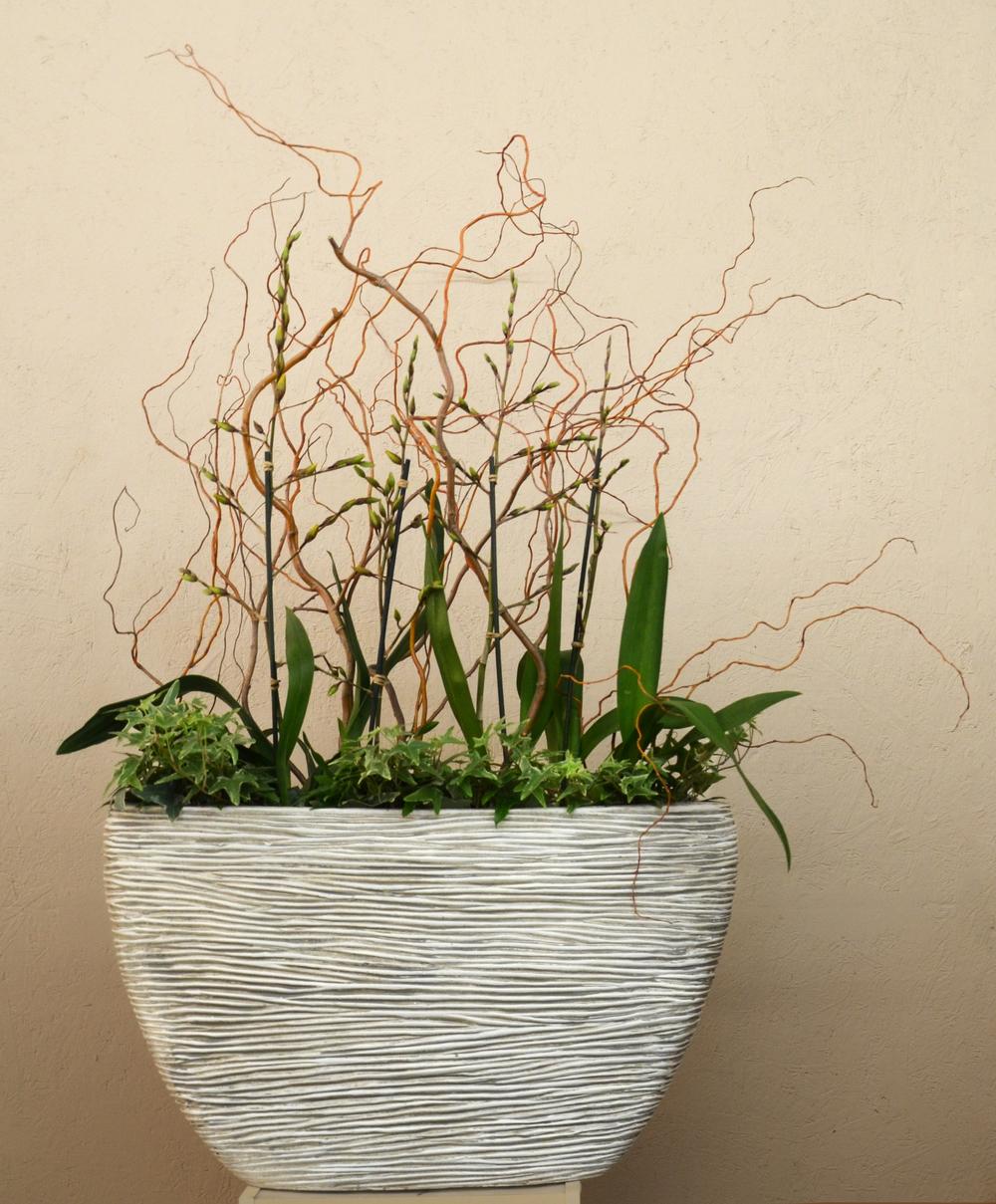 Harding Botanicals. Orchid Bowl