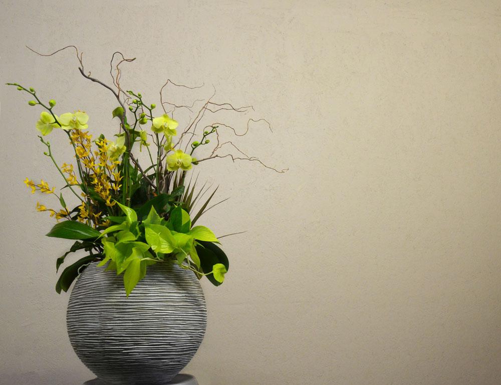 Harding Botanicals. Orchid Bowl.