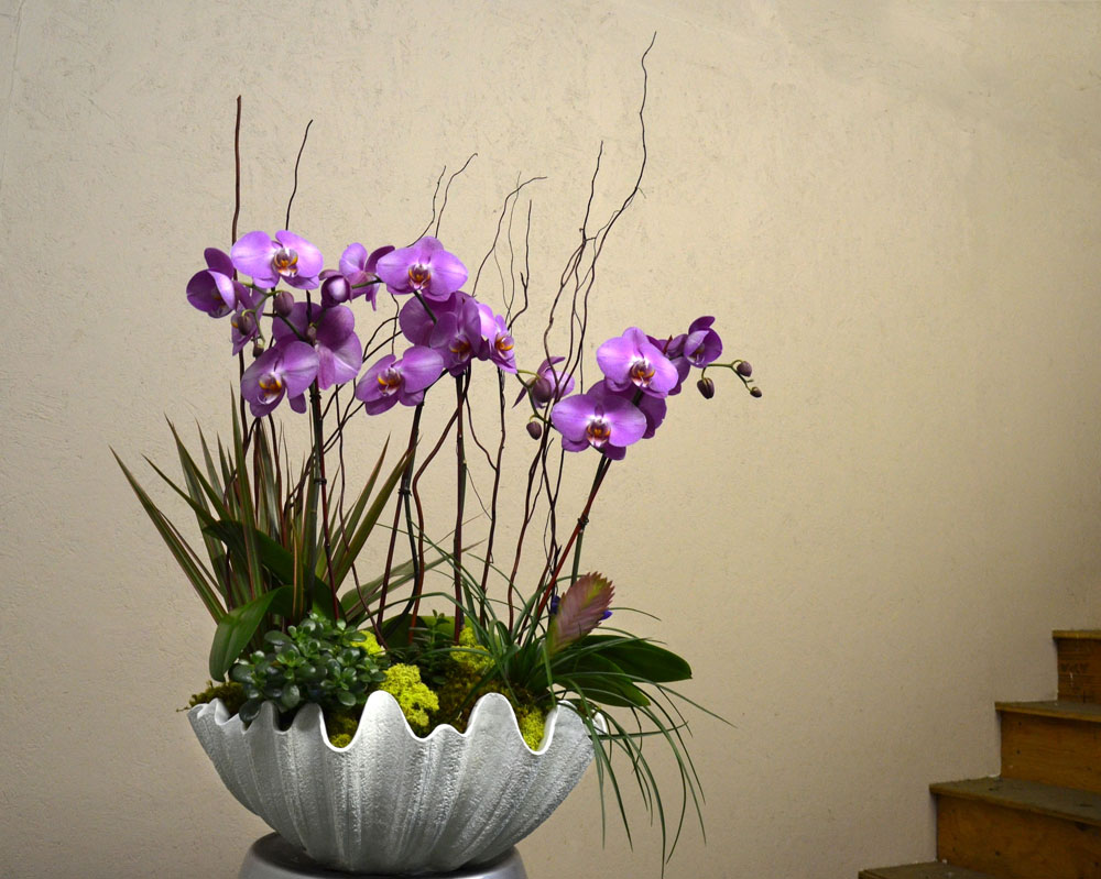 Harding Botanicals. Orchid Bowl. Orchid