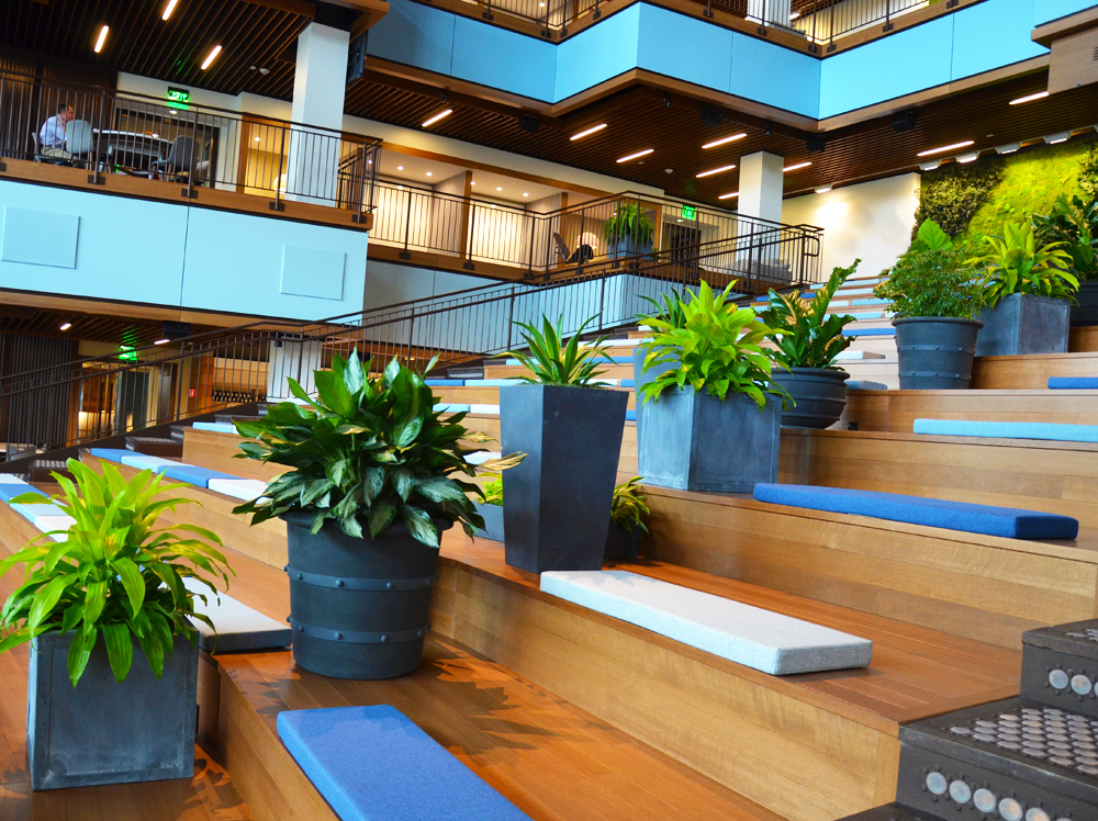 Harding Botanicals interior plantscape TripAdvisor