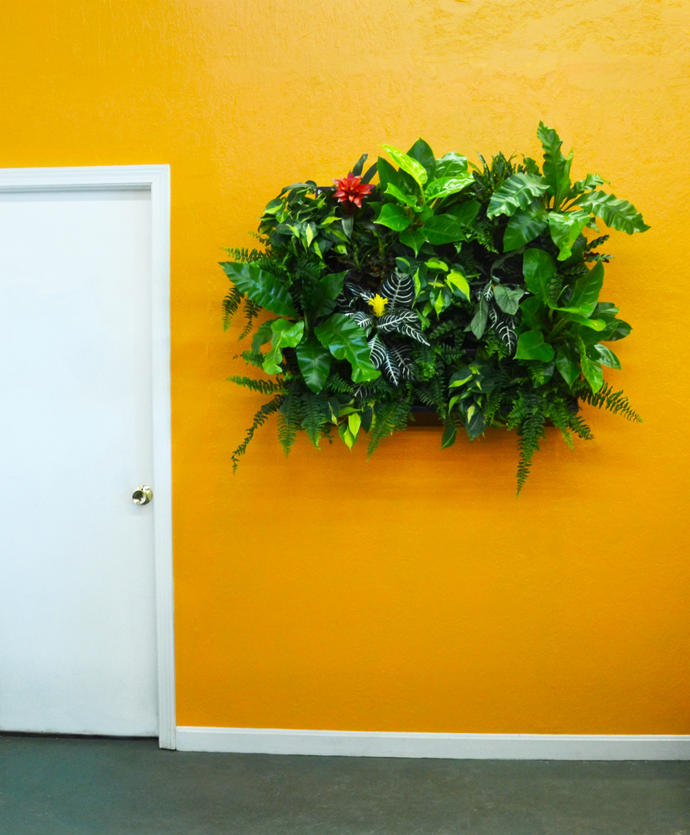 Harding Botanicals. Green Wall