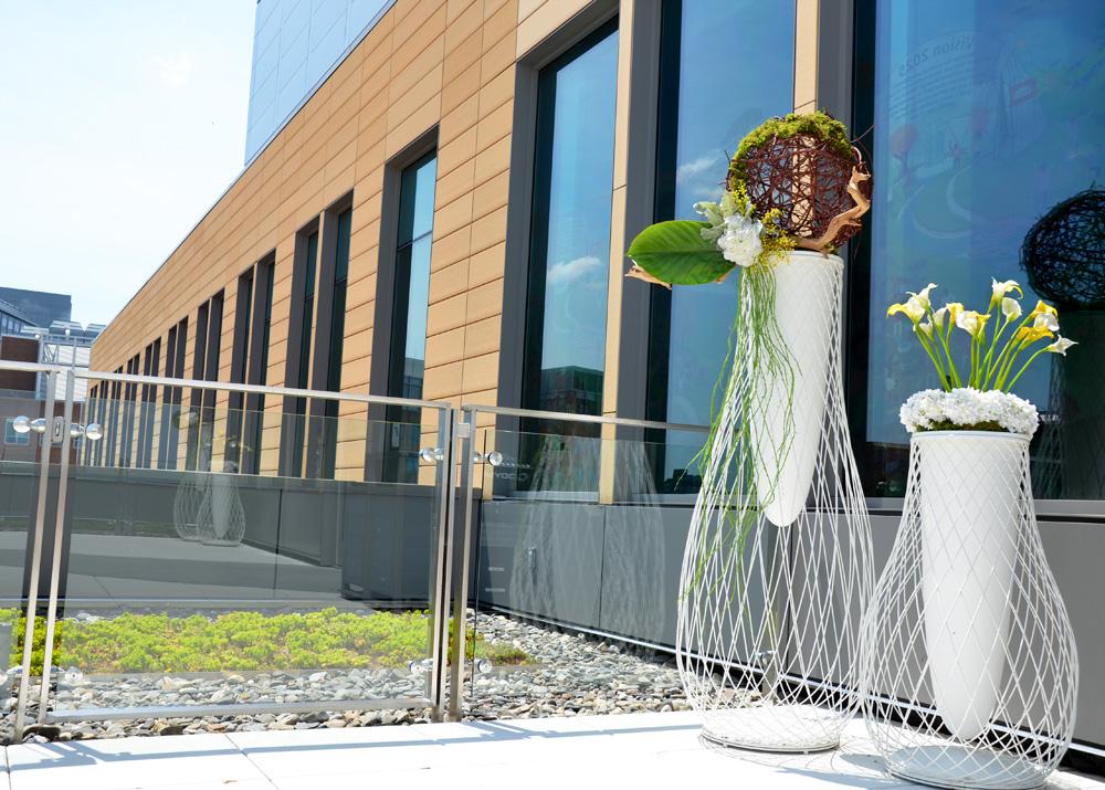 Harding Botanicals Plant Design