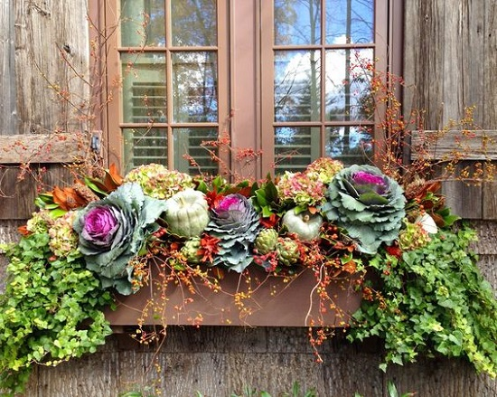 Harding Botanicals_Fall Containers 1.jpg