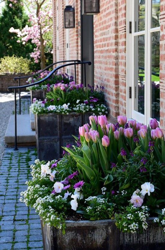 Harding Botanicals_Spring Container Gardens 2.jpg