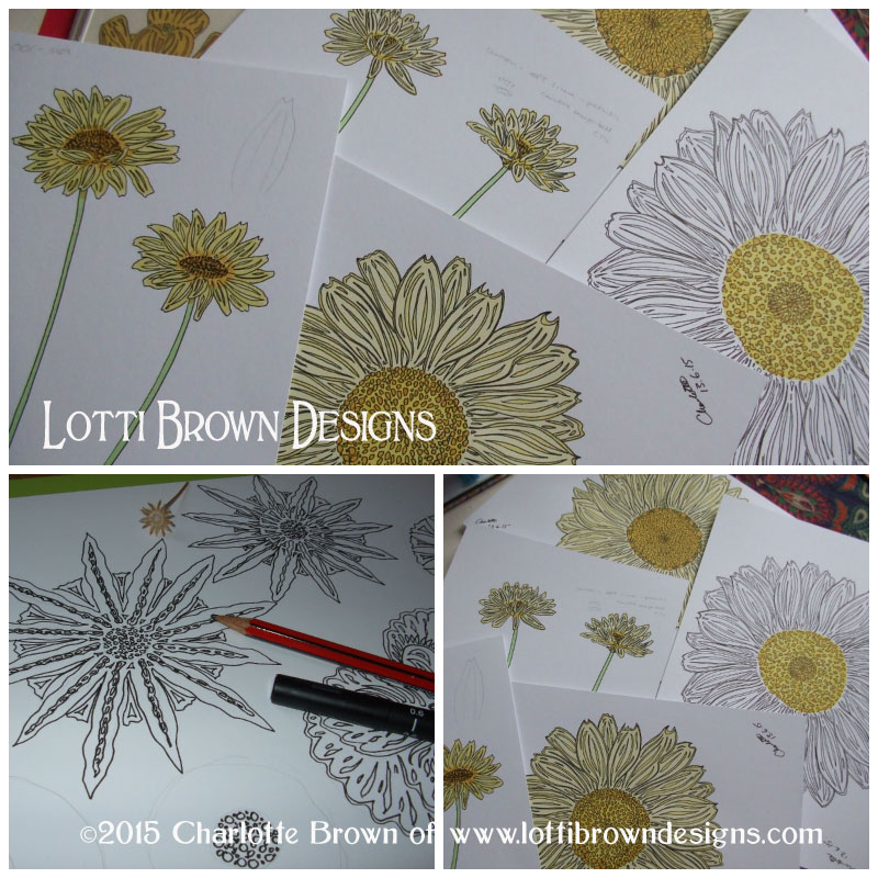 Some of my daisy drawings (unfinished) plus some abstract drawings inspired by flower seed heads from my own garden
