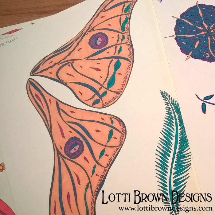 Butterfly wings drawing