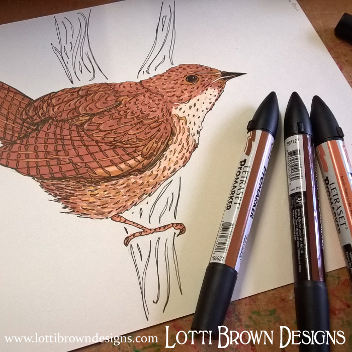 Sneak peek of a wren I've been working on recently - appearing soon in a finished artwork