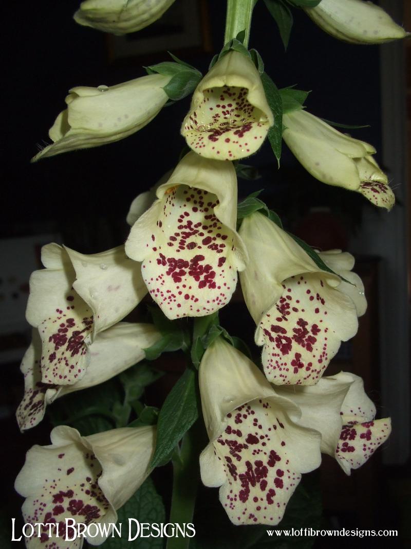 Patterned petals!