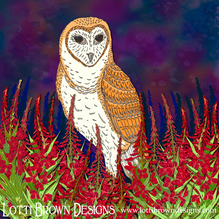 Fireweed Barn Owl - Artwork by Lotti Brown