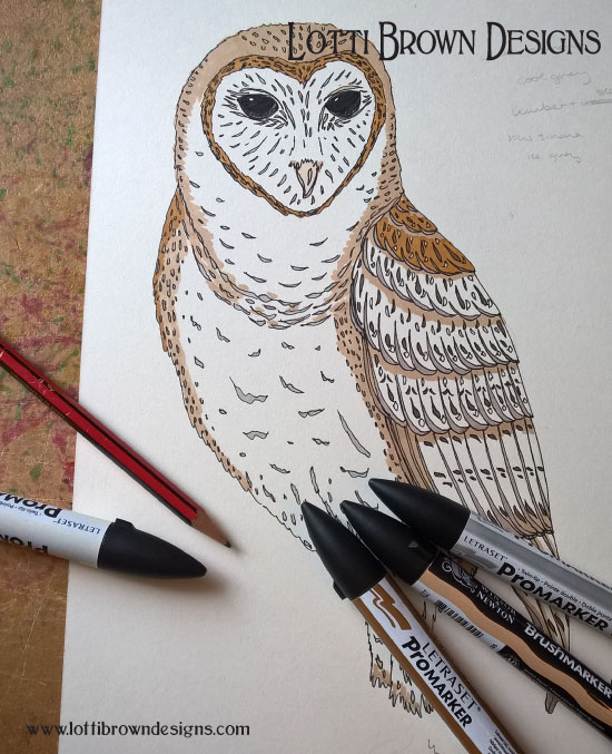 Adding colour to my owl drawing