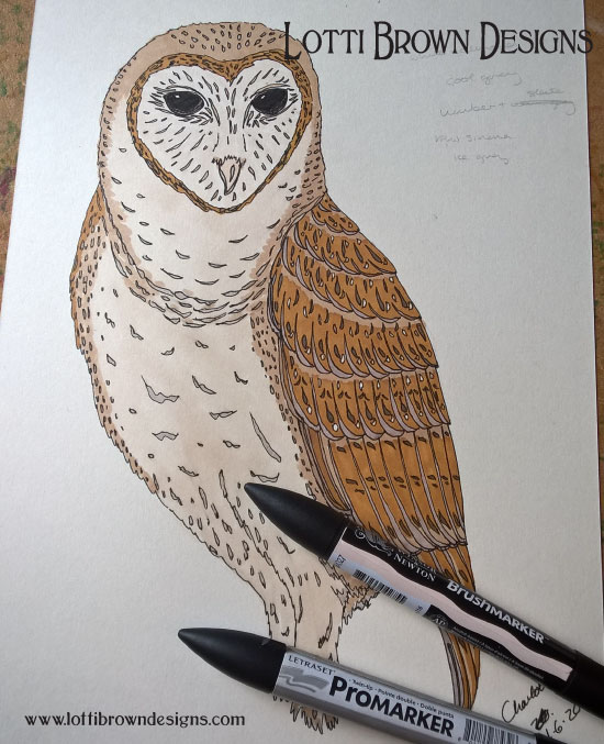 Completed owl drawing, in colour