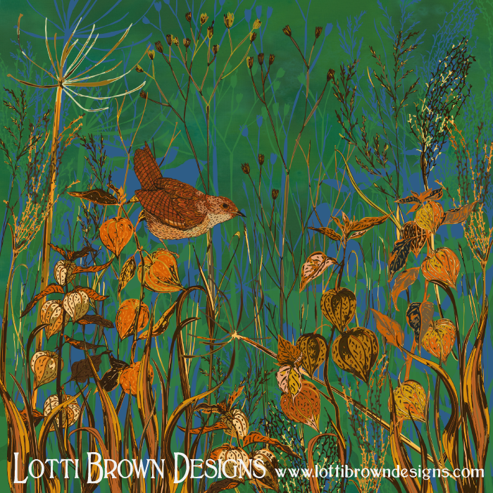 Winter Glimpses: Wren & Physalis, by Lotti Brown