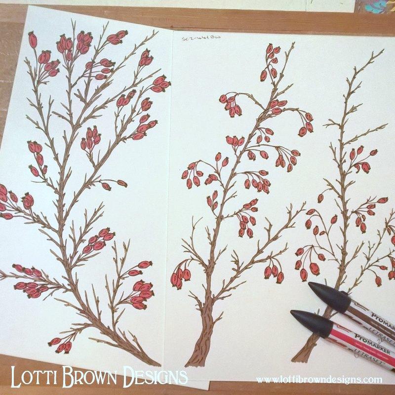 Hawthorn drawings