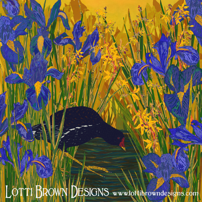 Moorhen and Iris - click to find the print in my store