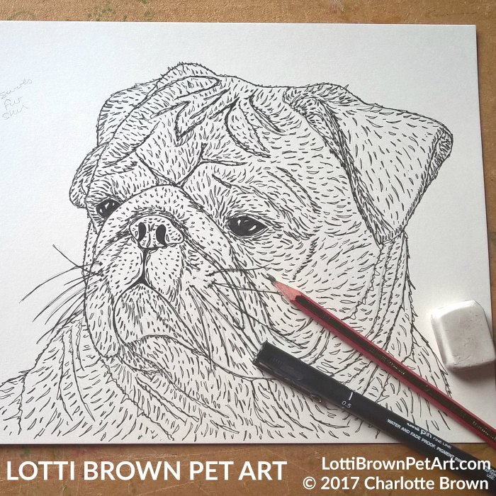 Starting the pug art drawing