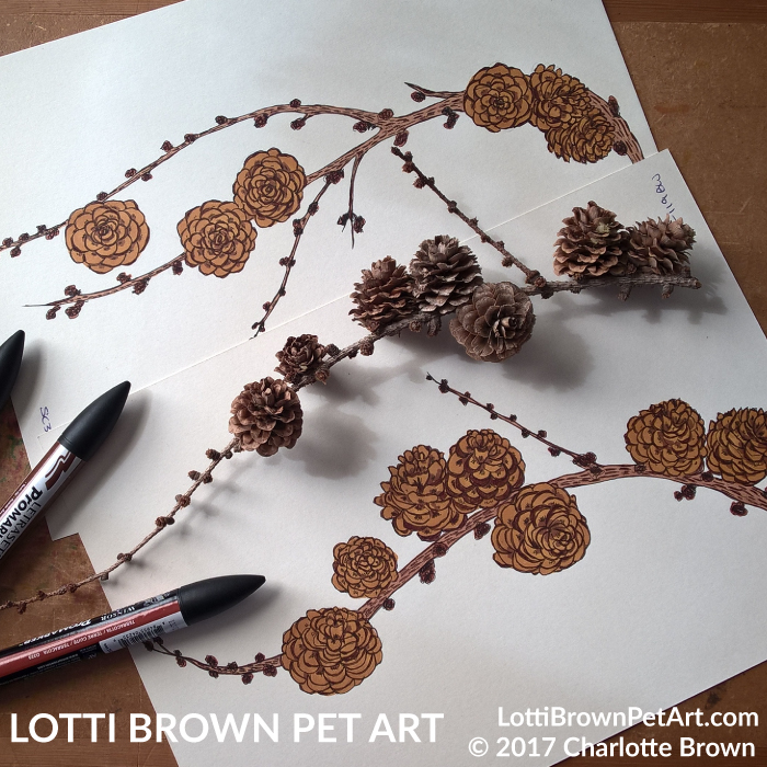 Adding colour to the fir cones