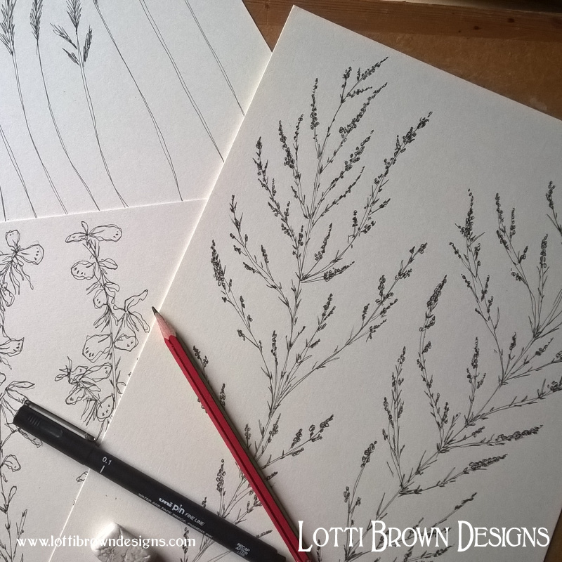 Drawing grasses and foliage