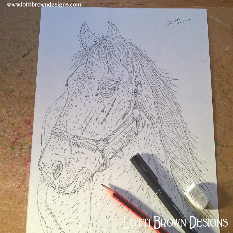 Drawing the horse outline