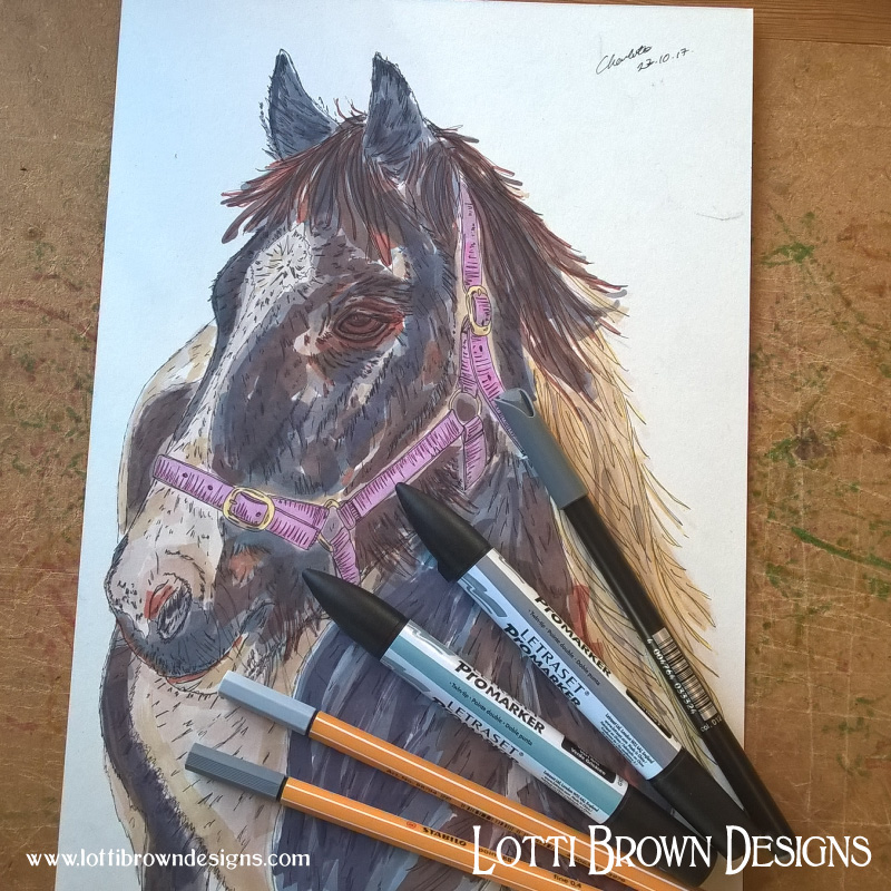 Adding colour to the horse drawing