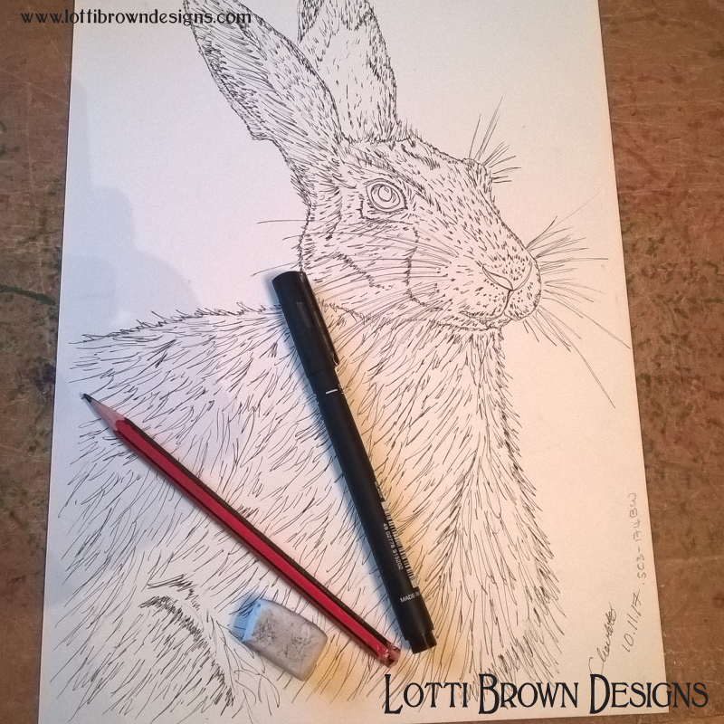 Starting my hare drawing