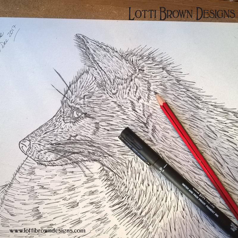 Starting my fox drawing