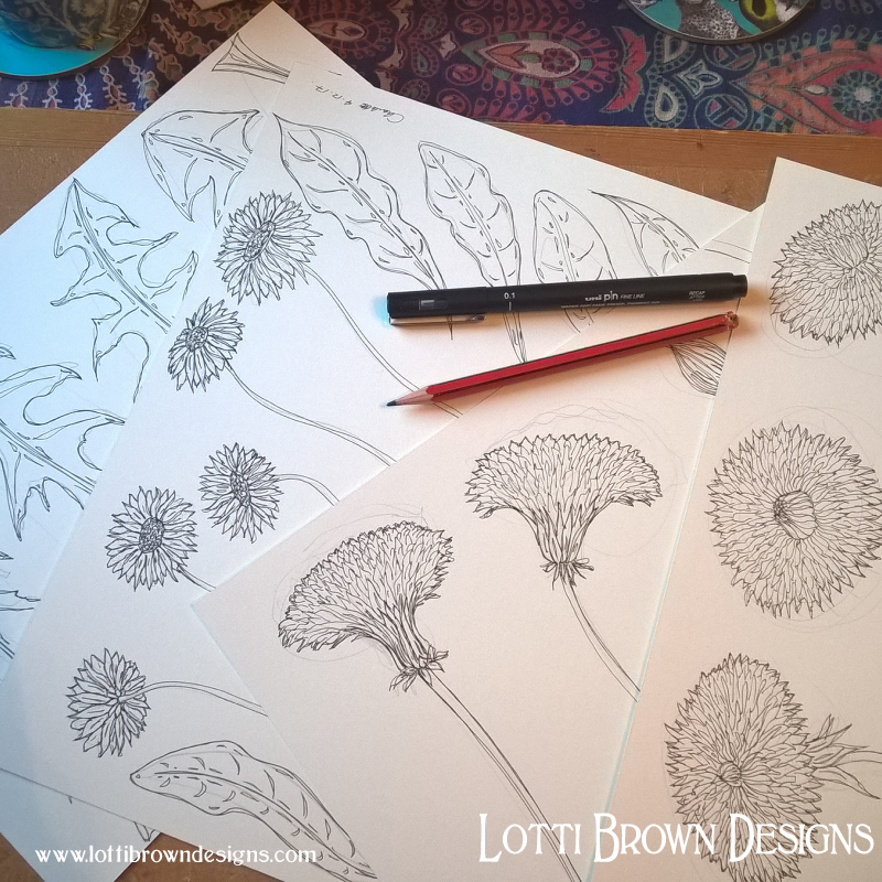 Drawing dandelions and daisies