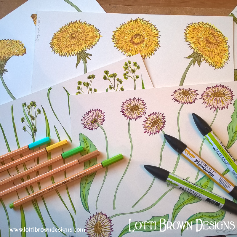 Adding colour to the flower drawings