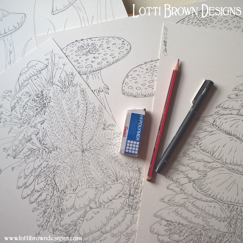 Drawing the toadstools and ferns