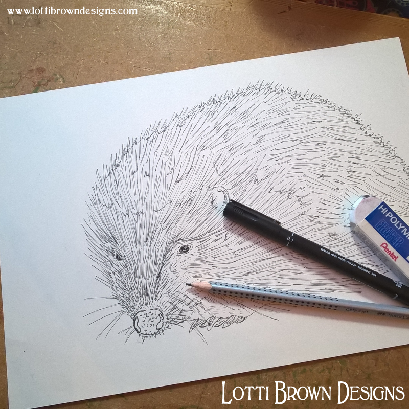 Beginning the hedgehog drawing