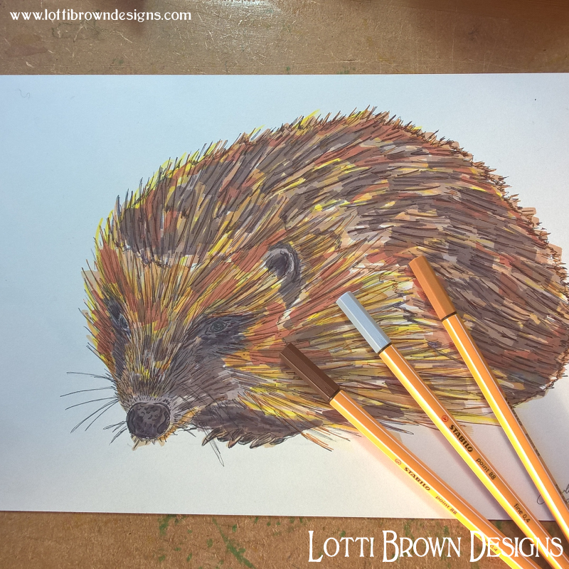 Adding colour to my hedgehog drawing