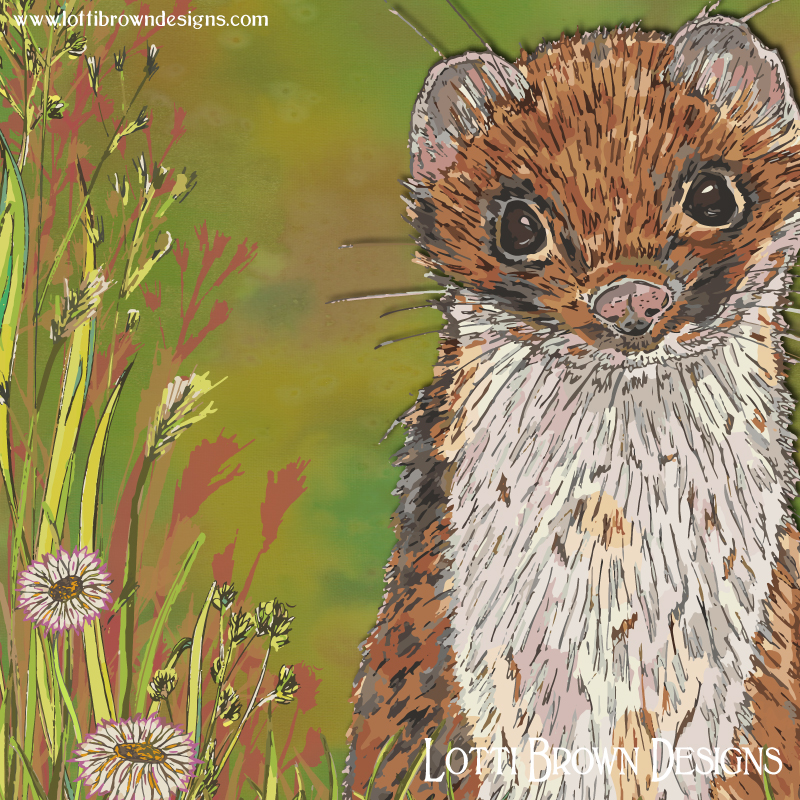 'Summer Stoat' art print