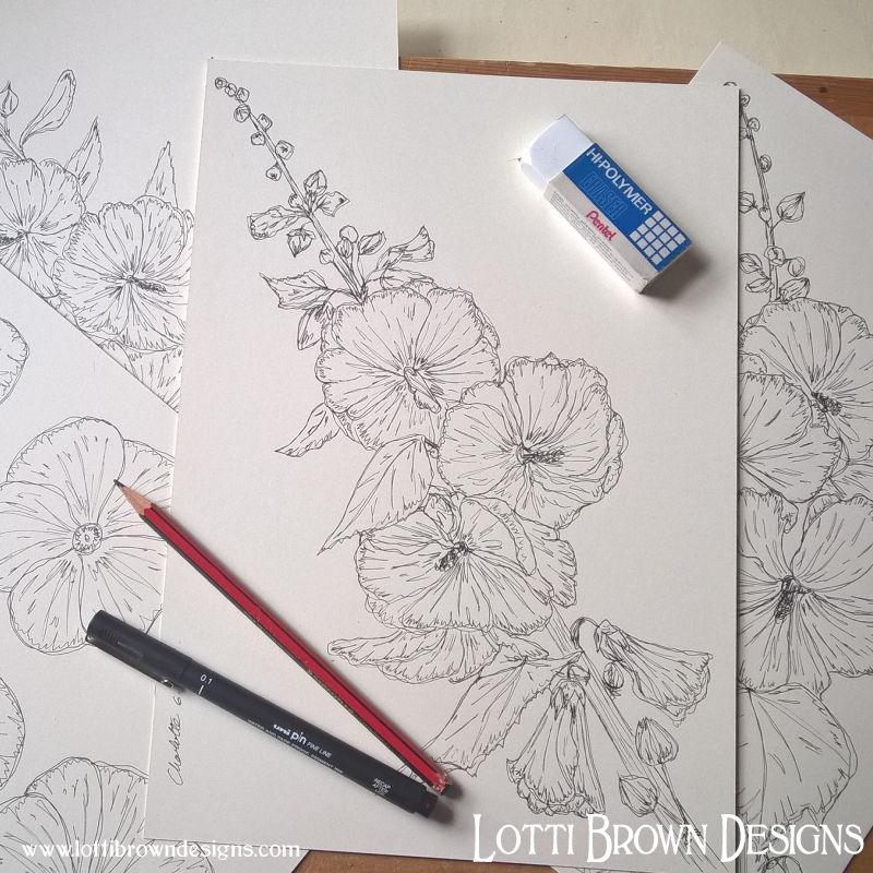 Starting my flower drawings